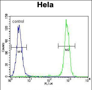 Carboxypeptidase B1 Antibody (PA5-35093) in Flow Cytometry