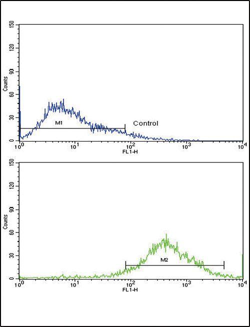 CD62L Antibody (PA5-35327) in Flow Cytometry