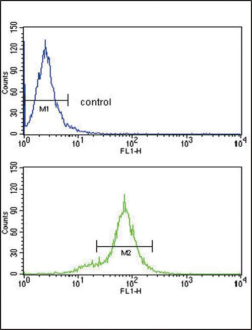 HLA-B Antibody (PA5-35345) in Flow Cytometry
