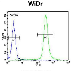 Annexin A7 Antibody (PA5-35358) in Flow Cytometry