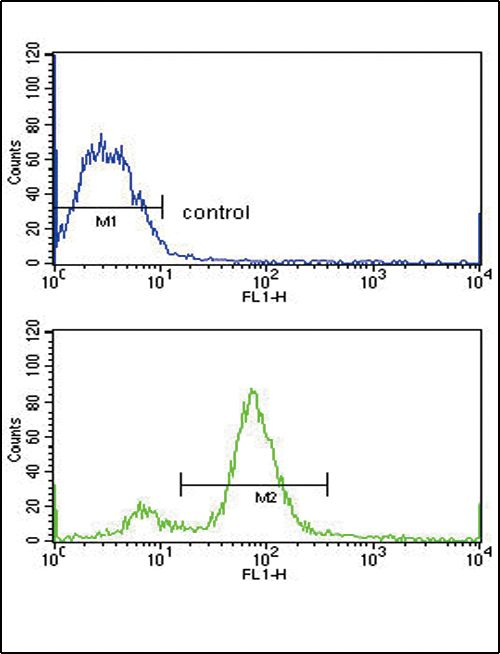 BMI-1 Antibody (PA5-35360) in Flow Cytometry