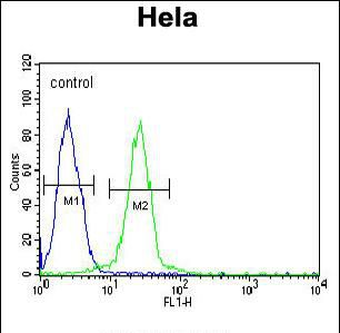 EWSR1 Antibody (PA5-35366) in Flow Cytometry