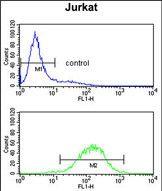 C1QB Antibody (PA5-35369) in Flow Cytometry