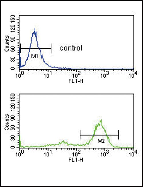 ETV6 Antibody (PA5-35371) in Flow Cytometry