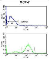 gamma Catenin Antibody (PA5-35375) in Flow Cytometry