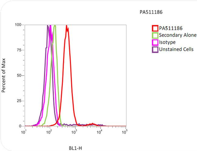 Histone H3 Antibody (PA5-11186) in Flow Cytometry