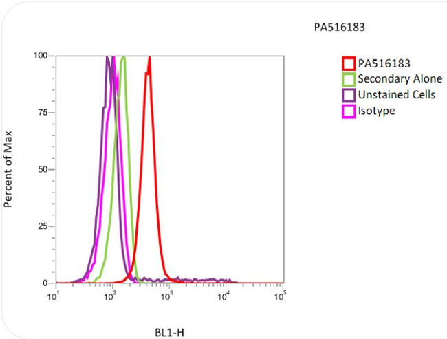 Histone H3 Antibody (PA5-16183) in Flow Cytometry