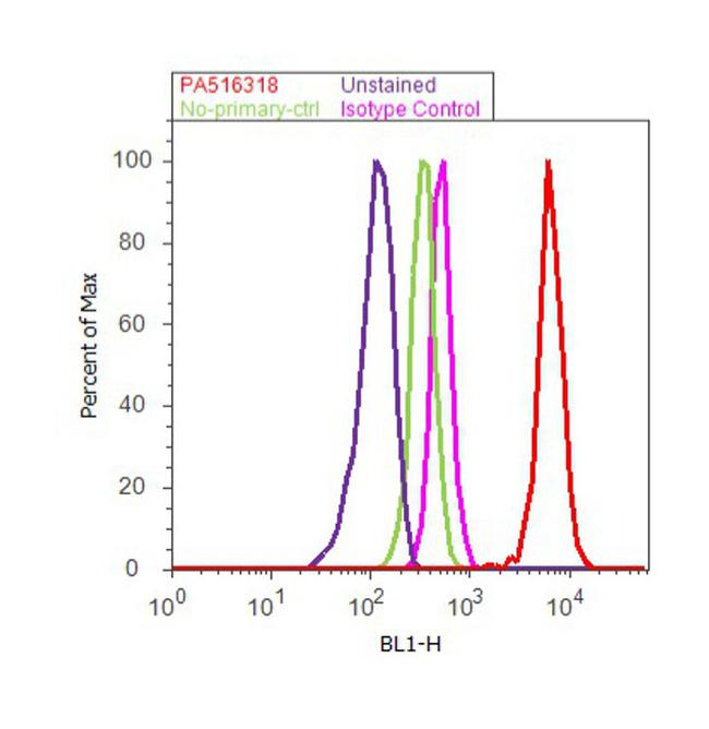 COX1 Antibody (PA5-16318) in Flow Cytometry
