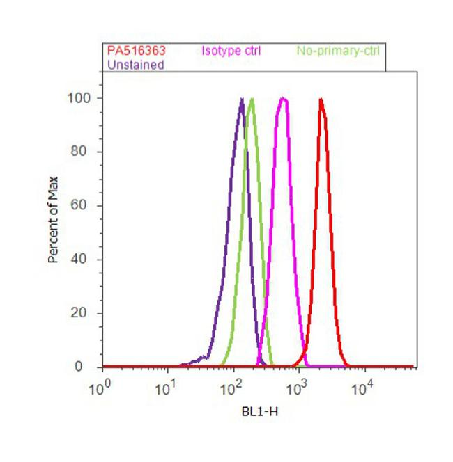 Androgen Receptor Antibody (PA5-16363) in Flow Cytometry