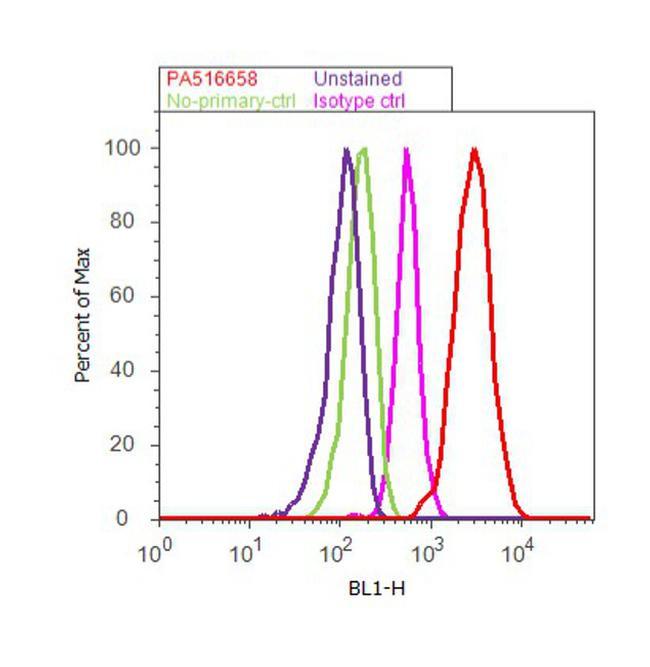 AFP Antibody (PA5-16658) in Flow Cytometry