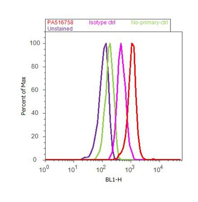 NFkB p65 Antibody (PA5-16758) in Flow Cytometry