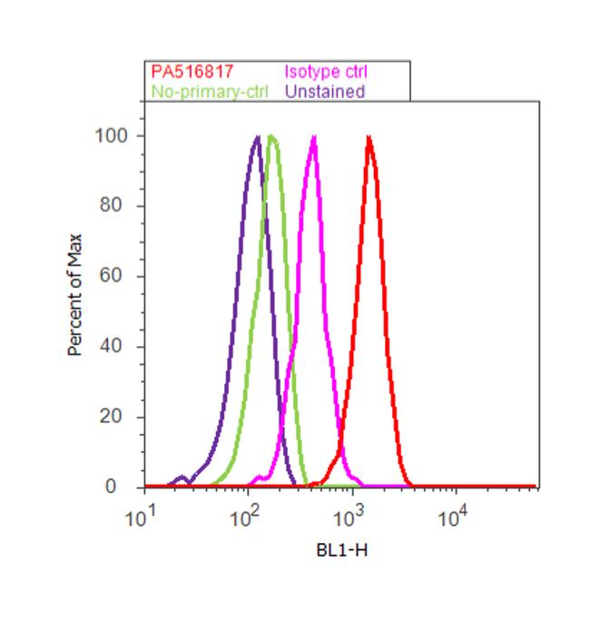 COX2 Antibody (PA5-16817) in Flow Cytometry