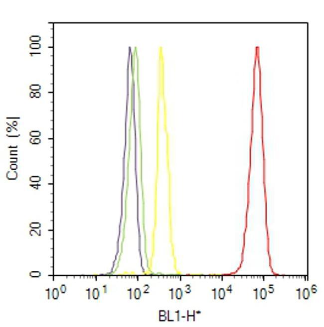 beta Tubulin Antibody (PA5-16863) in Flow Cytometry