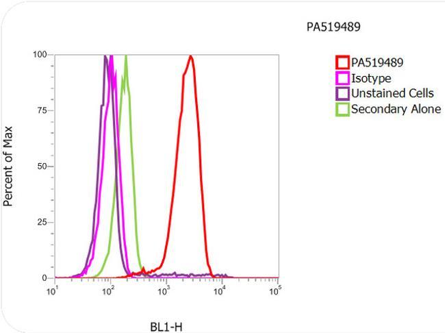 alpha Tubulin Antibody (PA5-19489) in Flow Cytometry