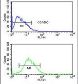 PARP16 Antibody (PA5-25891) in Flow Cytometry