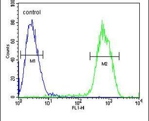 PCDHGC3 Antibody (PA5-23650) in Flow Cytometry