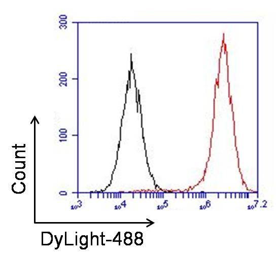 PCNA Antibody (PA5-16797) in Flow Cytometry