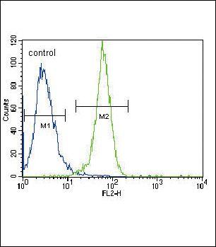 PGK1 Antibody (PA5-13863) in Flow Cytometry
