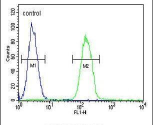 PHLPP2 Antibody (PA5-25995) in Flow Cytometry
