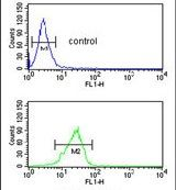 PITX1 Antibody (PA5-14219) in Flow Cytometry