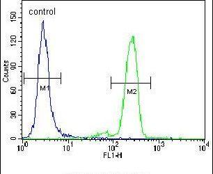 PML Antibody (PA5-12185) in Flow Cytometry