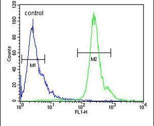 PNPLA8 Antibody (PA5-24642) in Flow Cytometry