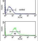 POLDIP2 Antibody (PA5-14612) in Flow Cytometry