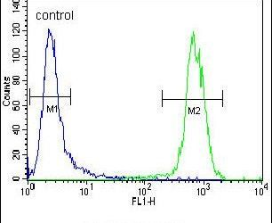 PON1 Antibody (PA5-24178) in Flow Cytometry