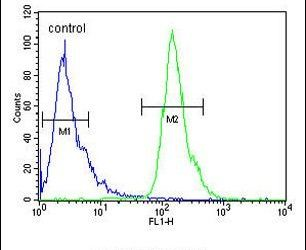 POTEH Antibody (PA5-24910) in Flow Cytometry