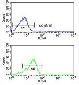 PPP3R2 Antibody (PA5-26390) in Flow Cytometry