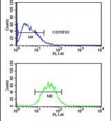 PR38A Antibody (PA5-26925) in Flow Cytometry