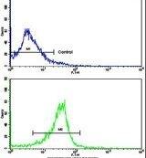 PRELP Antibody (PA5-13619) in Flow Cytometry