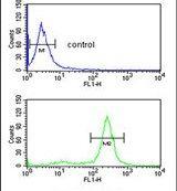 AMPK alpha-1 Antibody (PA5-25938) in Flow Cytometry
