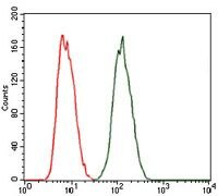 PKA gamma Antibody (MA5-17158) in Flow Cytometry