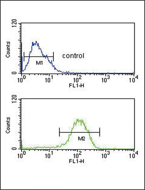 PYY Antibody (PA5-25027) in Flow Cytometry