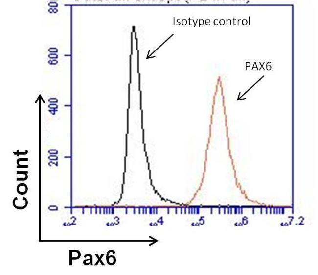 PAX6 Antibody (MA1-109) in Flow Cytometry