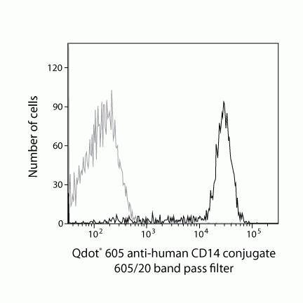 CD14 Antibody (Q10013)