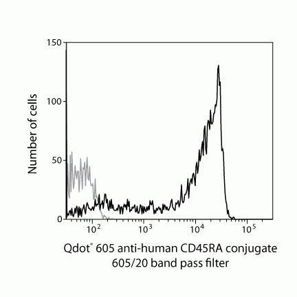 CD45RA Antibody (Q10047)
