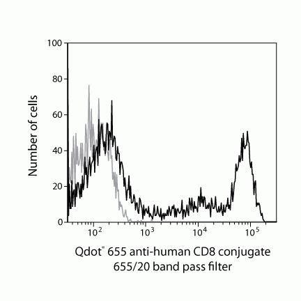 CD8 Antibody (Q10055)