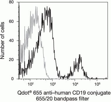 CD19 Antibody (Q10179) in Flow Cytometry
