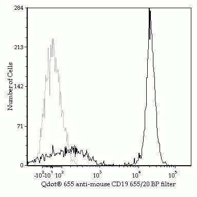 CD19 Antibody (Q10379) in Flow Cytometry