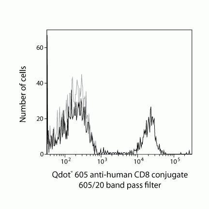 CD8 Antibody (Q10481)