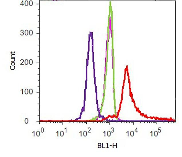6x-His Tag Antibody (R930-25) in Flow Cytometry