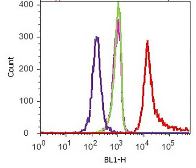 V5 Tag Antibody (R960-25) in Flow Cytometry
