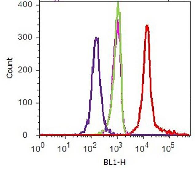 V5 Tag Antibody (R963-25) in Flow Cytometry