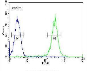 RAD26L Antibody (PA5-23676) in Flow Cytometry