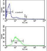 RAN Antibody (PA5-13652) in Flow Cytometry