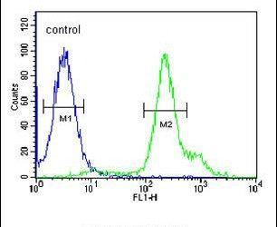 RBM24 Antibody (PA5-25520) in Flow Cytometry