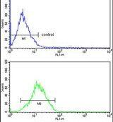 RBM3 Antibody (PA5-14290) in Flow Cytometry
