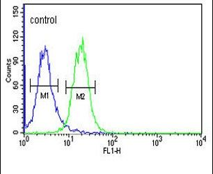 RHBG Antibody (PA5-26978) in Flow Cytometry